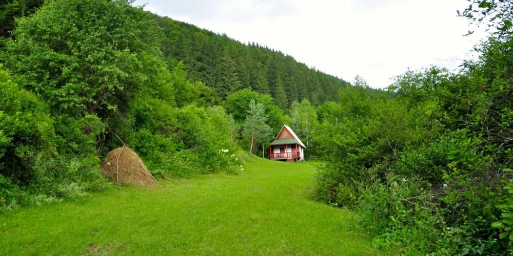 33b64f48bda7 Come Fly With Me To Transylvania - Dreamtime Traveler