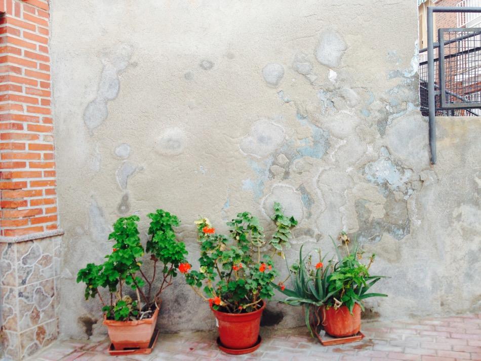 Aguilas Flowerpots