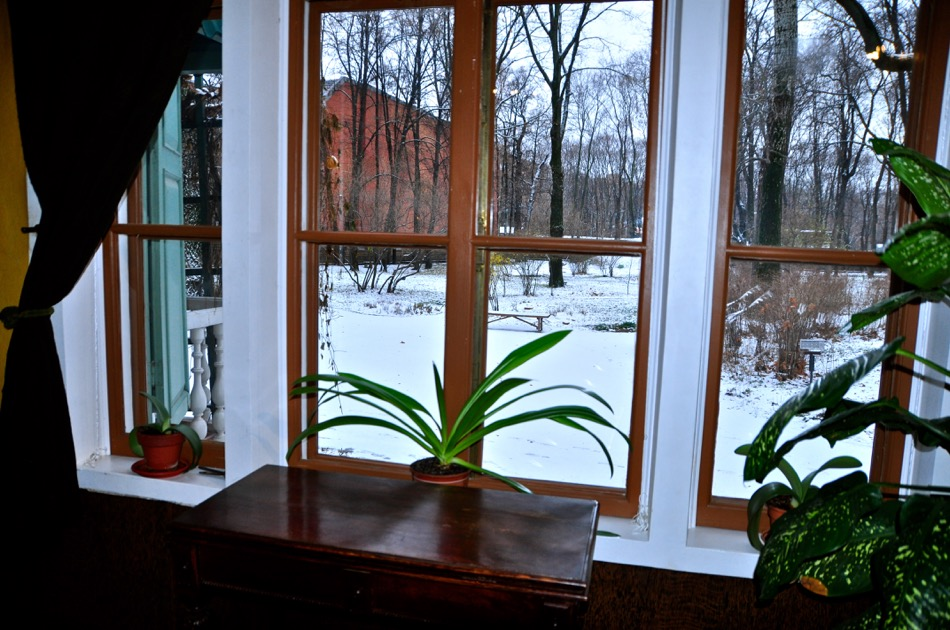 Leo Tolstoy Dining Rm View