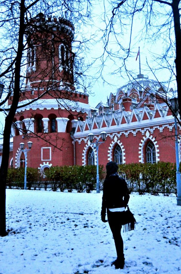 Petrovsky Palace_3