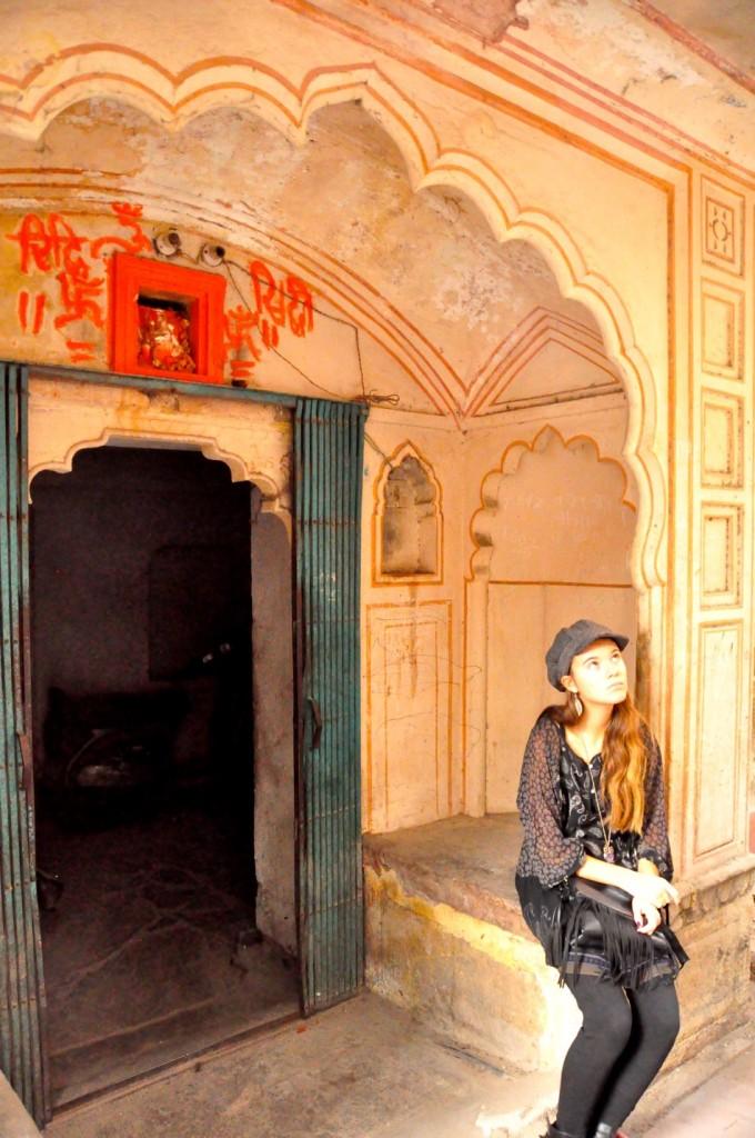 Jaipur-Reka 2