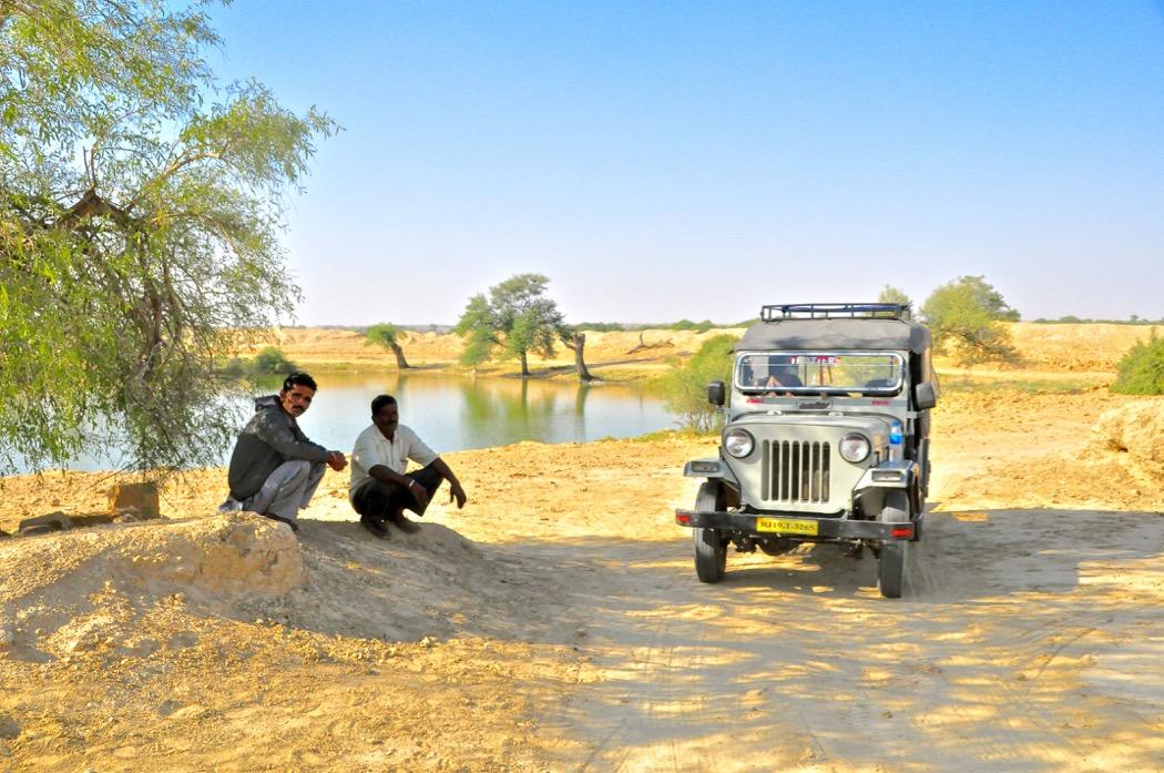 Story of Desert Oasis Mystery