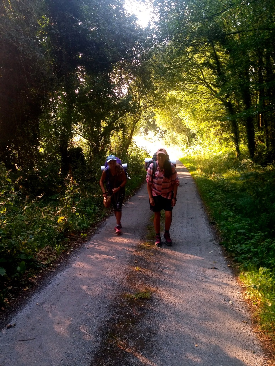 Galician Enchanted Forest Camino 2