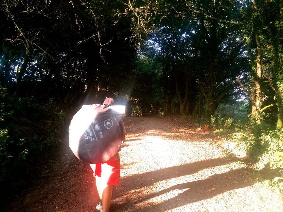 Galician Enchanted Forest Camino