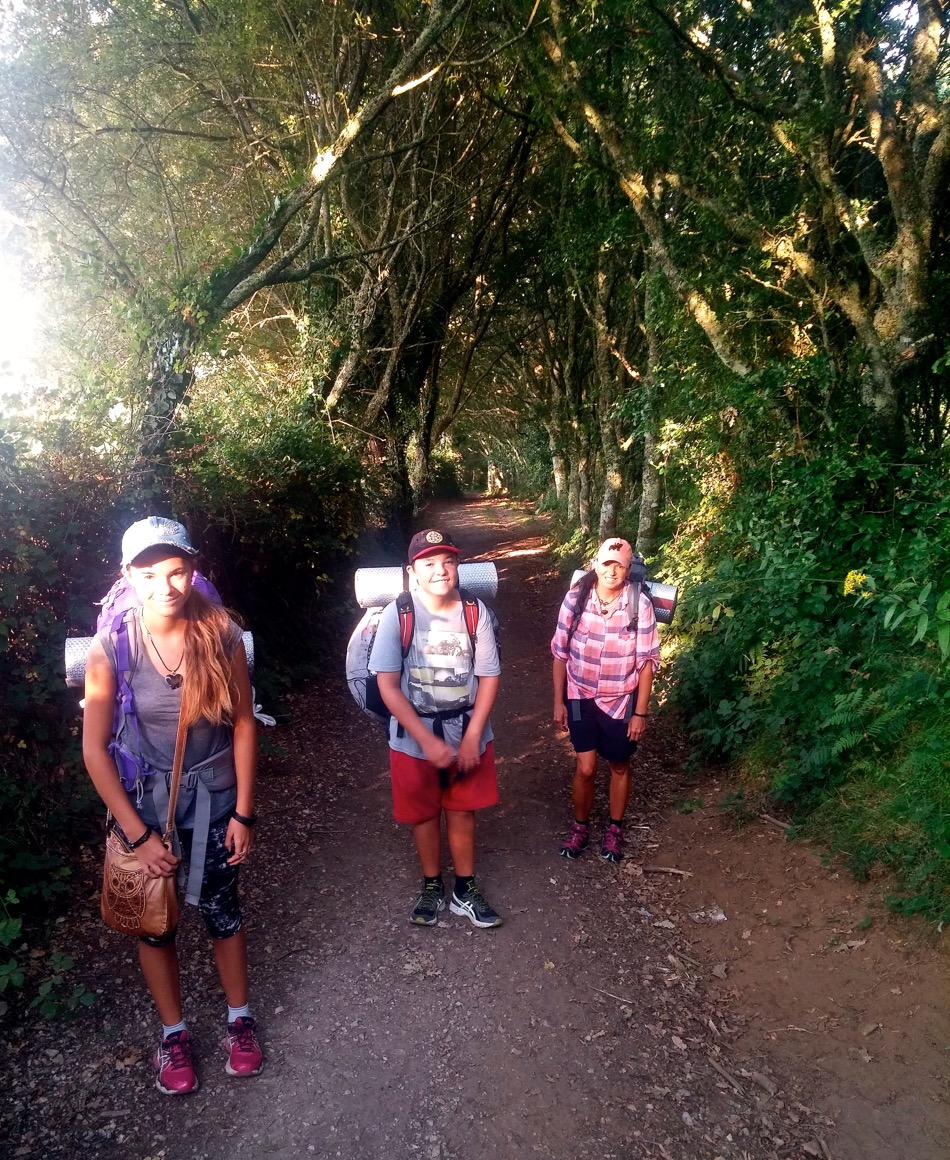 Camino through the Galician Enchanted Forest