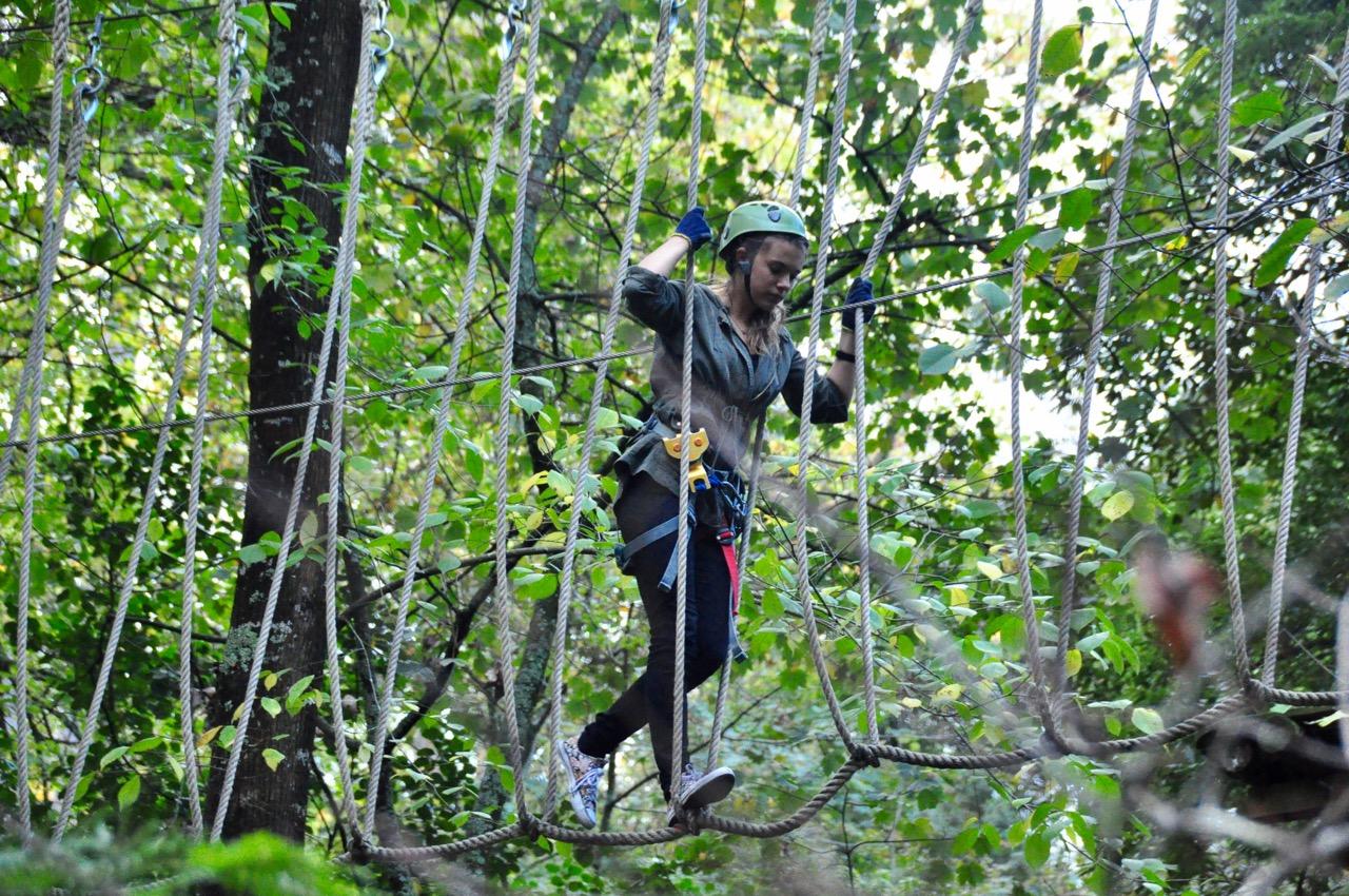 Treetops 9