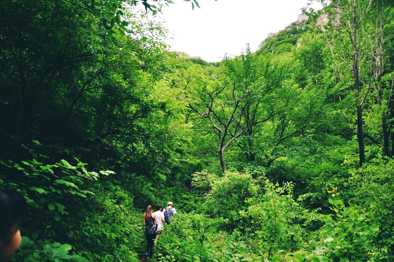 Great Wall Hike Jiankou