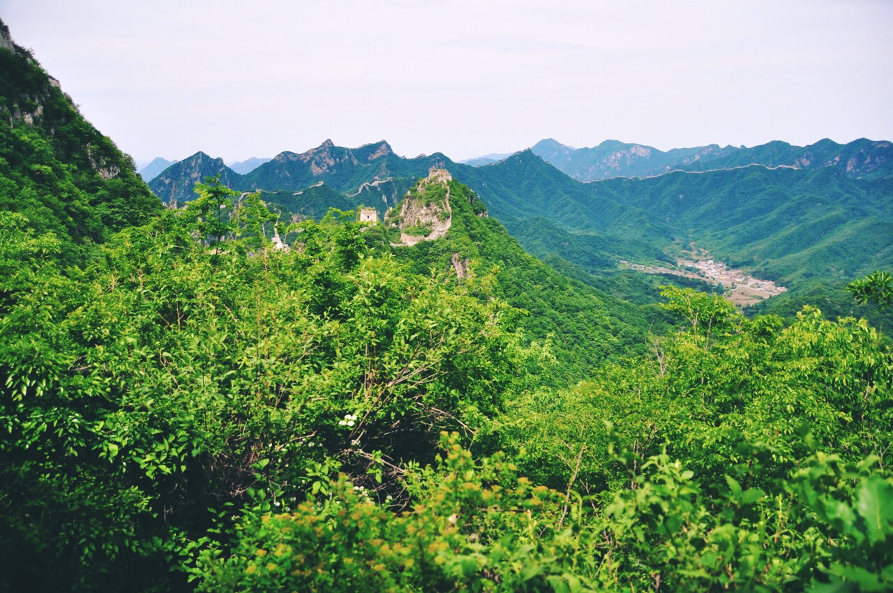 Great Wall Vista