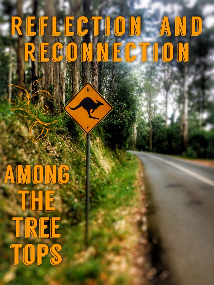 Reflection and Reconnection Among The Treetops Pin