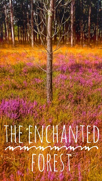 The Enchanted Forest Pin