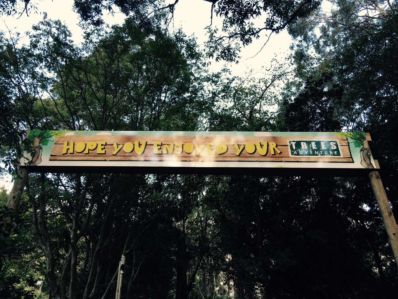 Treetops Exit