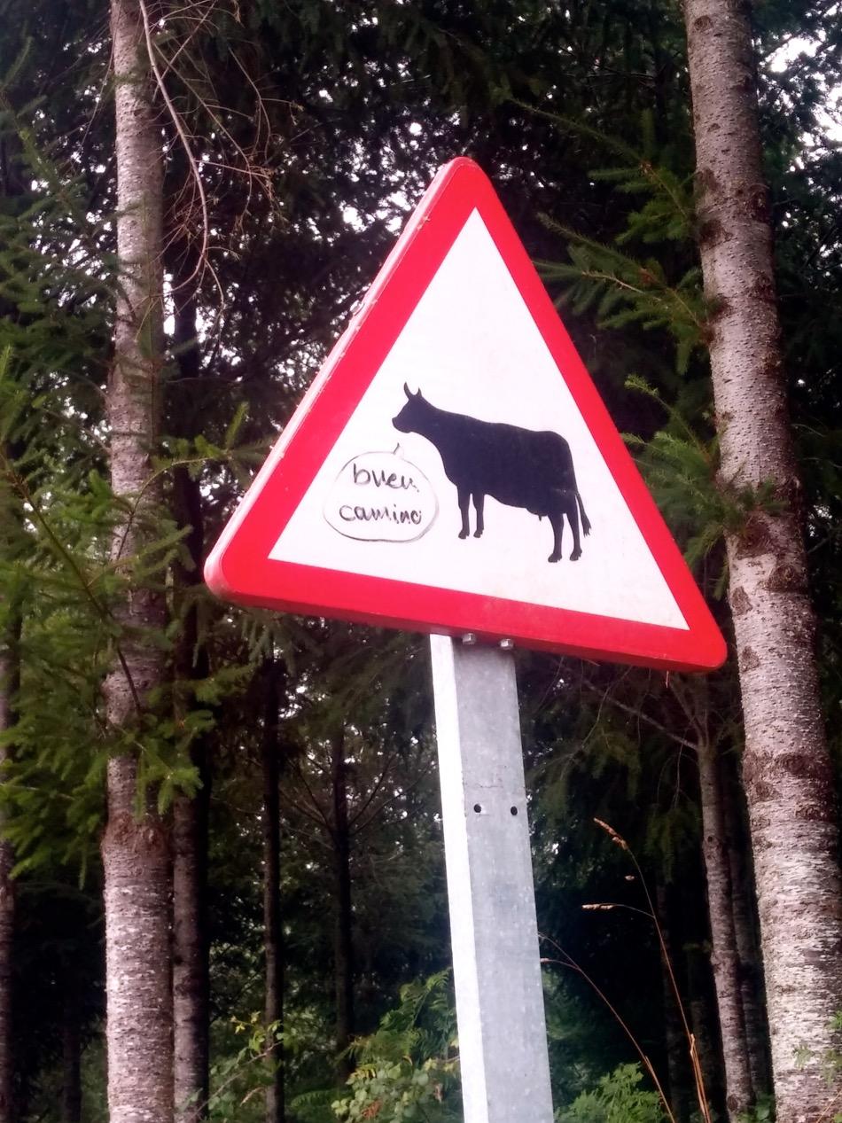 buen camino sign