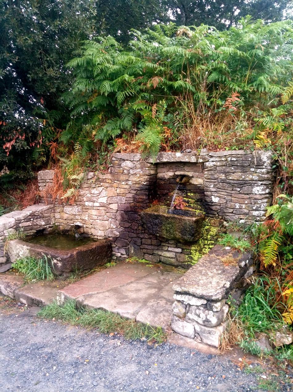 Camino Water tap